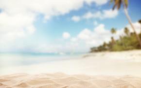 Картинка песок, пальмы, размытие, блюр