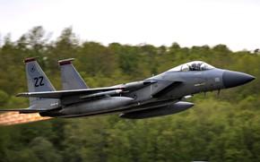 Картинка Eagle, F-15, ВВС США, четвёртого поколения, McDonnell Douglas, американский всепогодный истребитель