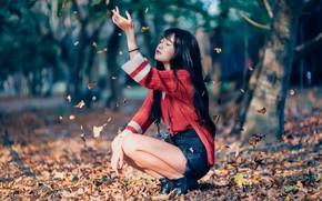 Картинка осень, девушка, листва