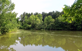 Картинка Природа, Река, Лес, Лето, Nature, Green, Summer, River, Forest, Июнь, June