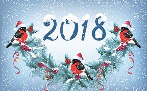 Картинка снег, праздник, новый год, гирлянда, синицы