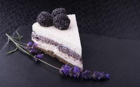 Обои крем, шоколад, мак, sweet, цветок, chocolate, dessert, десерт, торт