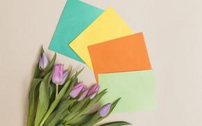 Картинка цветы, бумага, букет, Тюльпаны