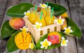 Картинка сок, бутылки, манго, плюмерия