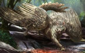 Картинка природа, тигр, фантастика, сова, грифон, by arvalis