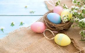 Картинка цветы, корзина, яйца, весна, colorful, Пасха, wood, pink, flowers, tulips, spring, Easter, eggs, decoration, Happy, …