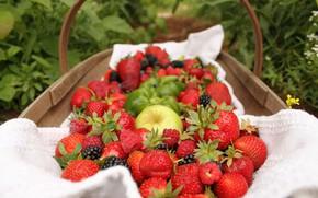 Картинка ягоды, корзина, яблоко, клубника, ежевика