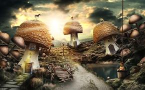 Картинка дорога, пруд, грибы, собака, указатель, ведро, телега, флюгер, a mushroom tale