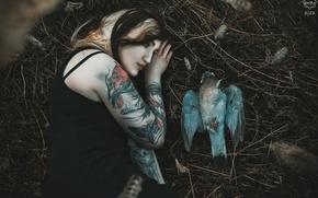 Картинка девушка, птица, Silent Purr, ☽ Feathers ☾