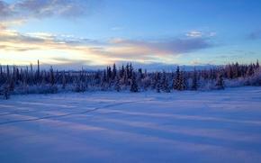 Обои зима, снег, деревья, Аляска