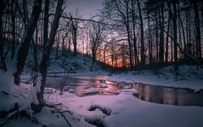 Картинка зима, лес, закат, река