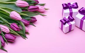Картинка букет, подарки, тюльпаны, love, розовые, бант, fresh, pink, flowers, romantic, tulips, gift, purple