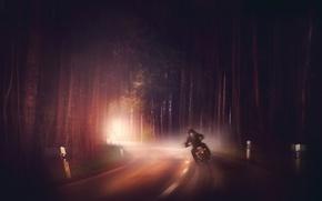 Картинка дорога, лес, туман, мотоцикл
