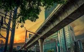 Картинка опора, эстакада, Таиланд, Бангкок, дом, дерево