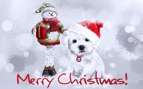Картинка зима, собака, Рождество, Новый год, снеговик, колпак