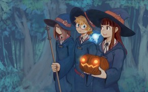 Картинка girl, forest, hat, anime, asian, witch, japanese, oriental, asiatic, bishojo, shounen, mahou, Little Witch Academia