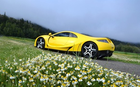 Картинка ромашки, суперкар, Spania, GTA Spano