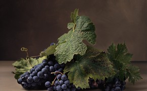 Картинка листья, ягоды, виноград
