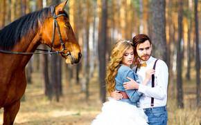 Картинка девушка, солнце, деревья, парк, лошадь, пара, парень, влюблённые, боке