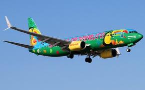 Обои летит, небо, солнце, самолет, Boeing 737-8K5, пассажирский