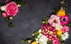 Картинка цветы, фон, гортензия, эустома