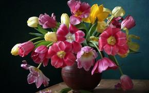 Картинка букет, лепестки, тюльпаны