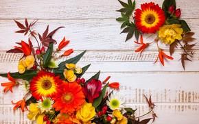 Обои осень, wood, композиция, листья, autumn, leaves, floral, frame, flowers, цветы