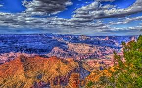 Картинка небо, солнце, облака, деревья, скалы, HDR, каньон, ущелье, США, Гранд-Каньон, Grand Canyon National Park