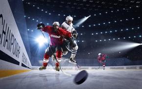 Картинка Спорт, Униформа, Мужчины, Хоккей, Лучи Свет, Каток