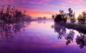 Картинка Pink, Landscape, Lake, Forest, Trees