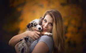 Картинка девушка, собака, щенок