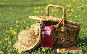 Картинка поле, лето, вино, книга, шляпка, пикник, корзинка