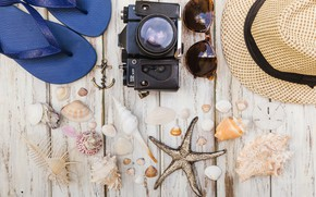 Картинка море, лето, ракушка, очки, фотоаппарат, сланцы, аксессуары