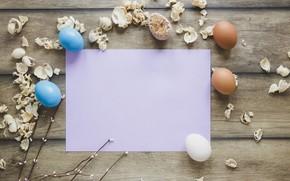 Картинка цветы, ромашки, весна, Пасха, wood, flowers, spring, Easter, eggs, decoration, Happy, tender, яйца крашеные
