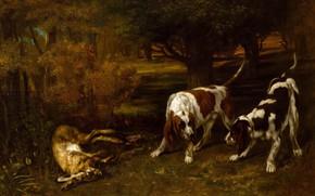 Картинка животные, картина, Gustave Courbet, Гюстав Курбе, Охотничьи Собаки с Мертвым Зайцем