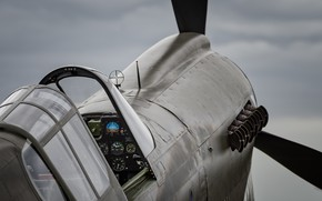 Картинка истребитель, P-40, Warhawk