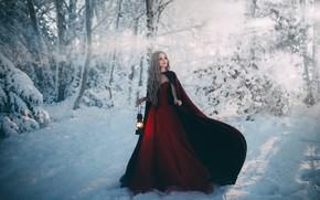 Картинка девушка, снег, платье, фонарь, Adam Bird