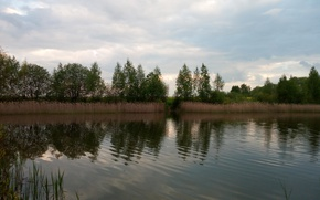 Картинка небо, деревья, озеро, волна