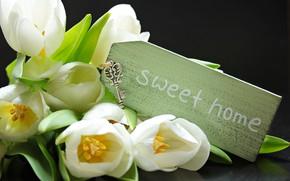 Картинка букет, весна, тюльпаны, белые, tulips, ключик