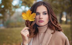 Картинка взгляд, парк, осеннее настроение, прическа, макияж, девушка, лист в руке, осень, модель