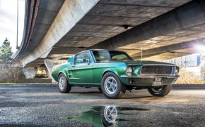 Обои Ford, Mustang, Fall, форд, Rear, Automotive, Green, Beautiful, мустанг, под мостом, American Muscle, GT390, Classic, ...