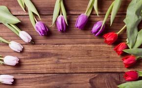 Картинка цветы, тюльпаны, бутоны, flowers, tulips, деревянный фон, buds, wooden background