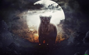 Картинка луна, львица, by naradjou14