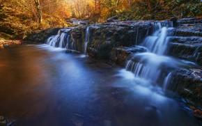 Картинка осень, лес, водопад, поток