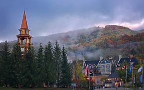 Картинка деревья, горы, туман, Город