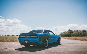 Обои дорога, авто, двигатель, тачка, Додж, Dodge, Challenger, диски, road, monster, auto, срт, челенджер, engine, slider, ...