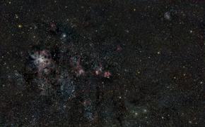 Картинка Золотая Рыба, в созвездии, NGC2070, Туманность Тарантул