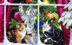 Обои кошки, елка, котята, Persis Clayton Weirs, украшения, игрушки, окно, снег, праздник, ветка