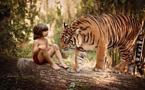 Картинка природа, тигр, дерево, животное, хищник, мальчик, ствол, бревно, маугли, ребёнок