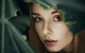 Картинка глаза, взгляд, девушка, лицо, листва